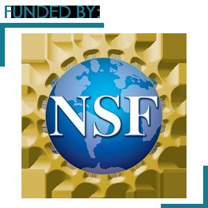 NSF 7.png