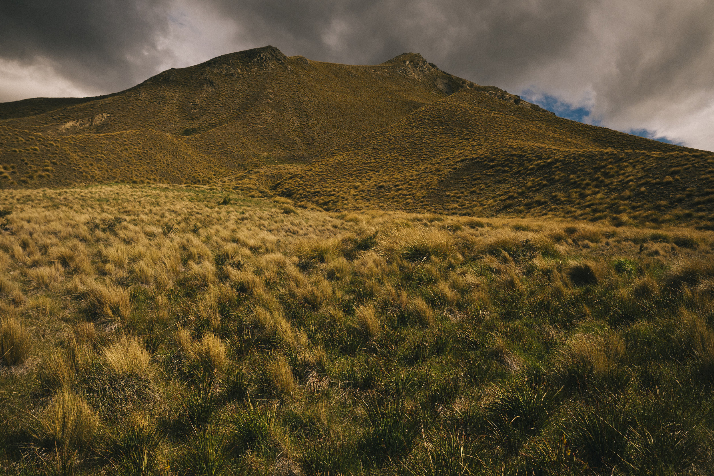 Lindis Pass, New Zealand - 2016