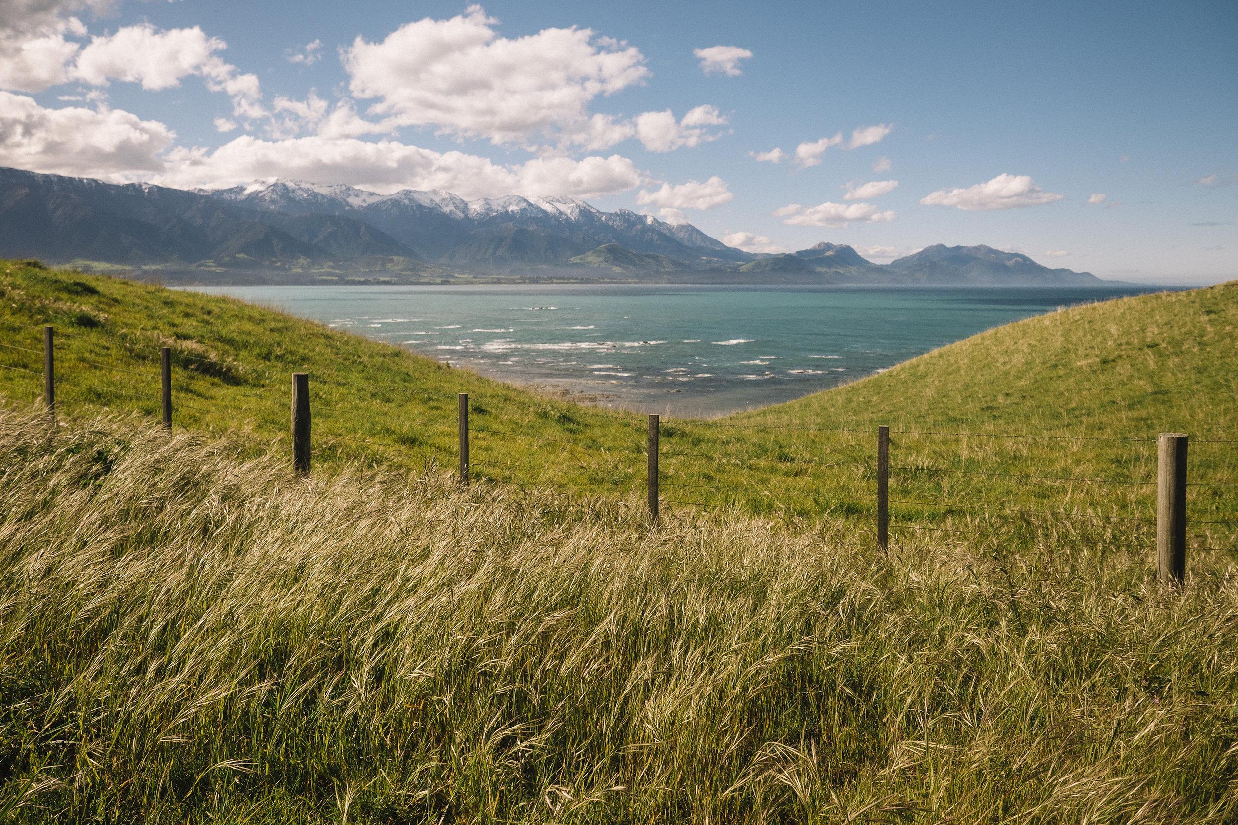 Kaikoura, New Zealand - 2016