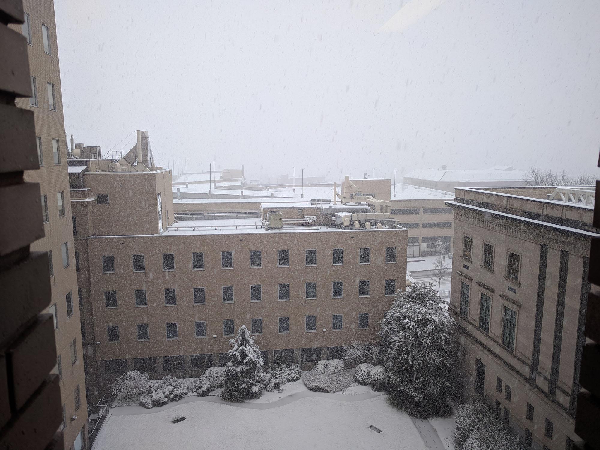 Snowy PCTB Courtyard