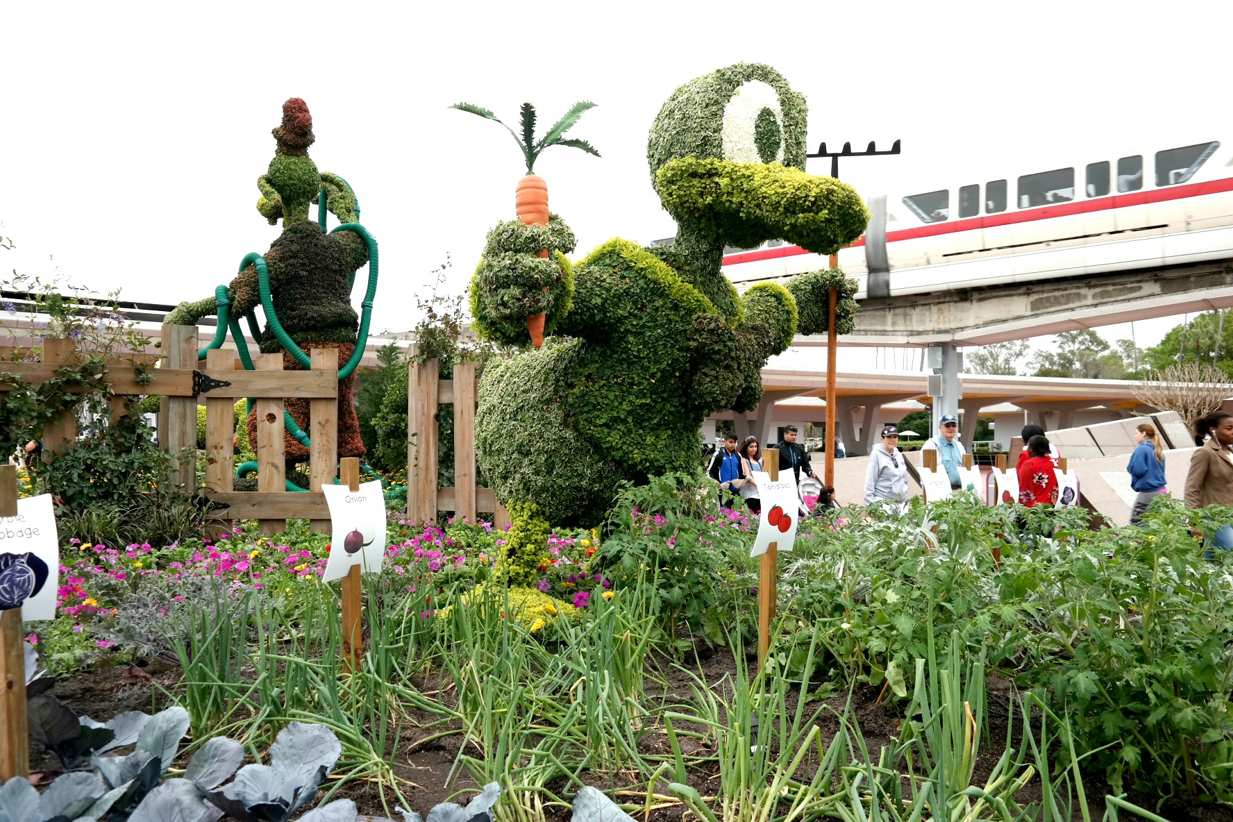 Epcot_Donald_Veggies_Rev.jpg