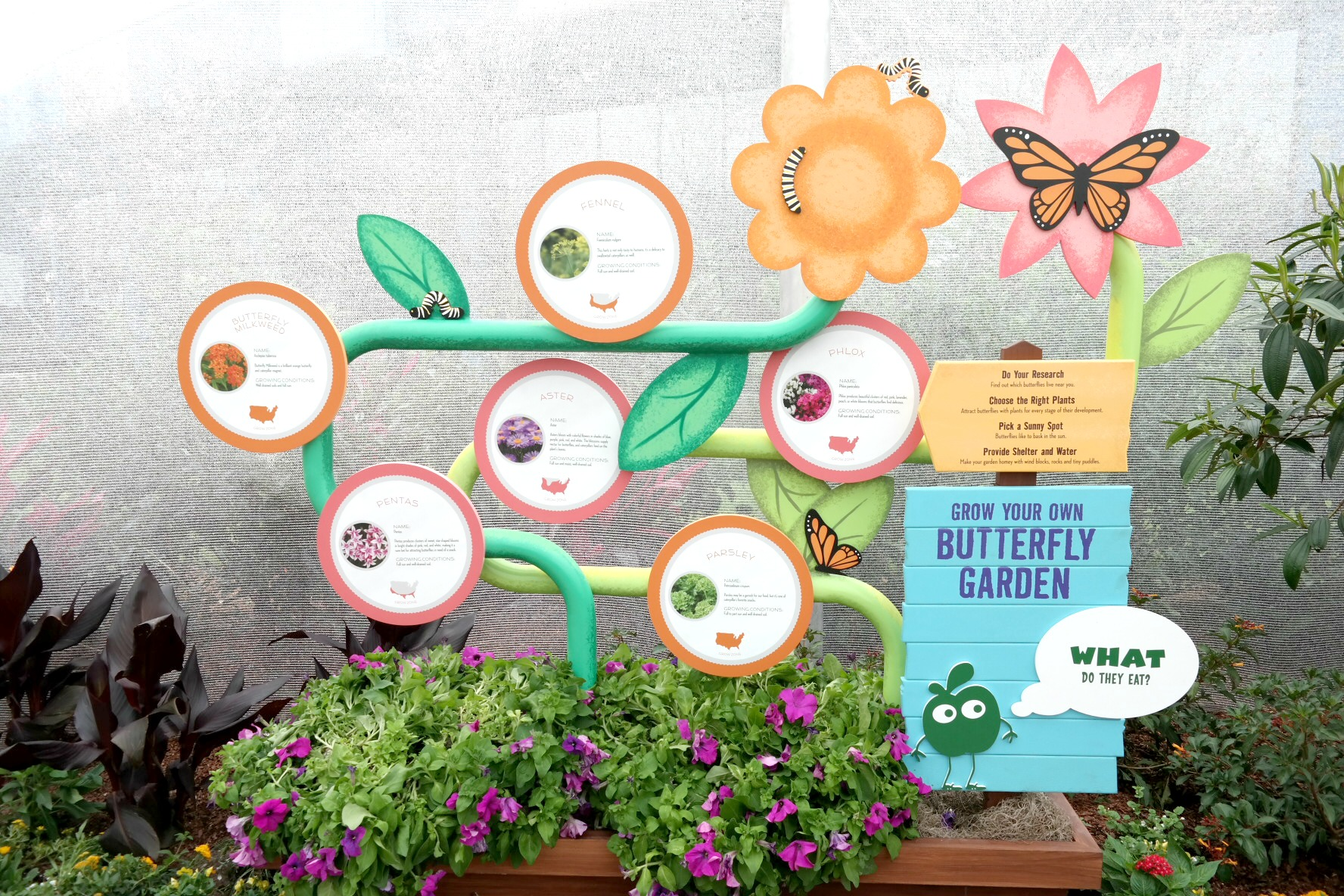 Butterfly_Garden_Instructions_Rev.jpg