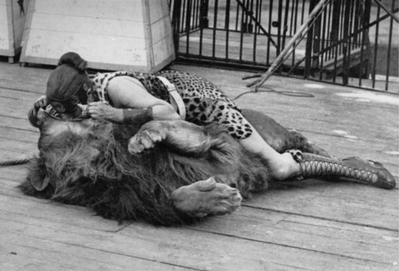 LionTamer.jpg