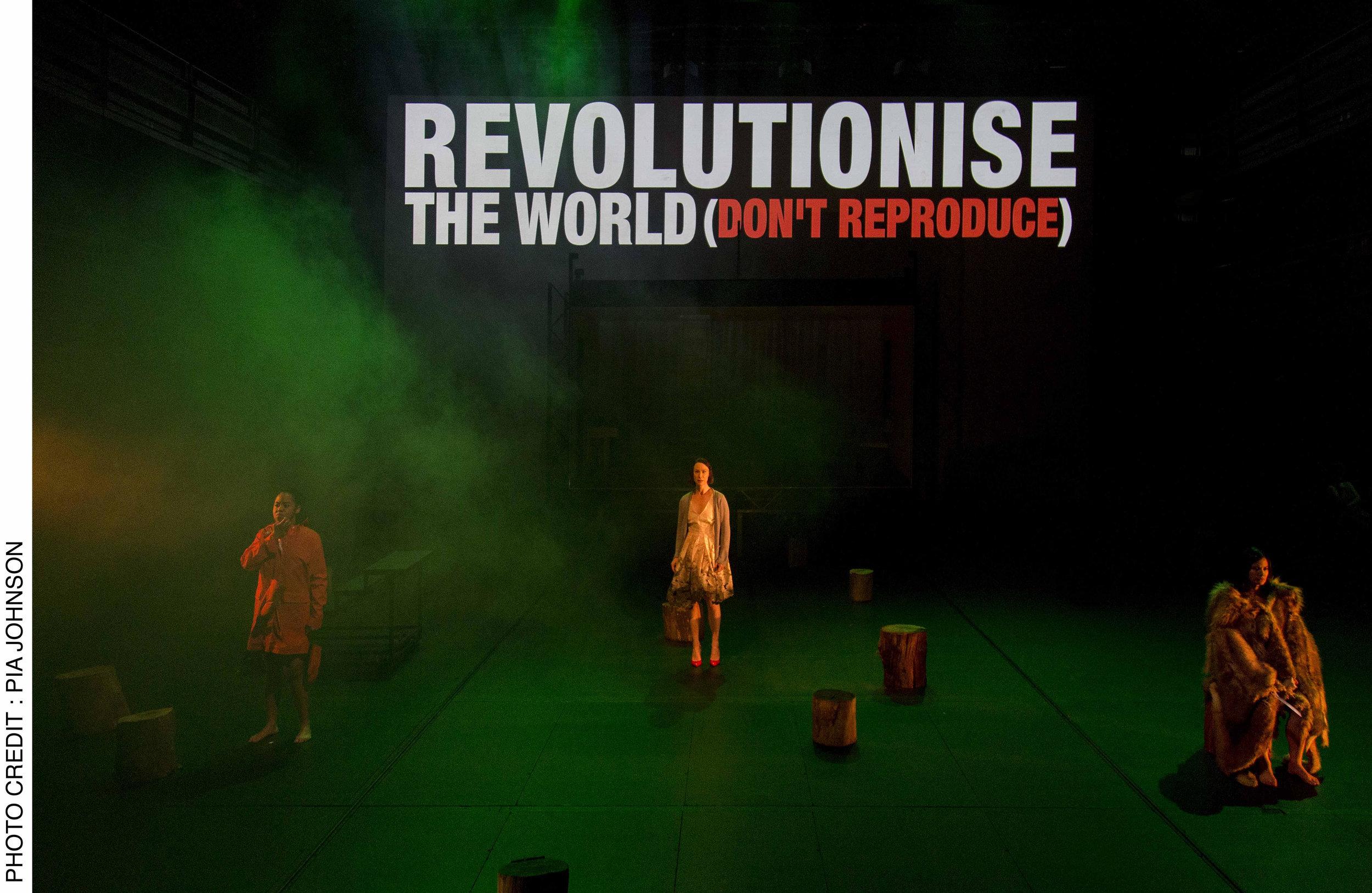revolt. in review.jpg