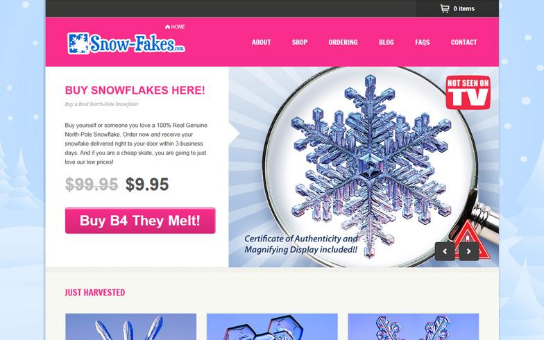 website-design-services-oc22.jpg