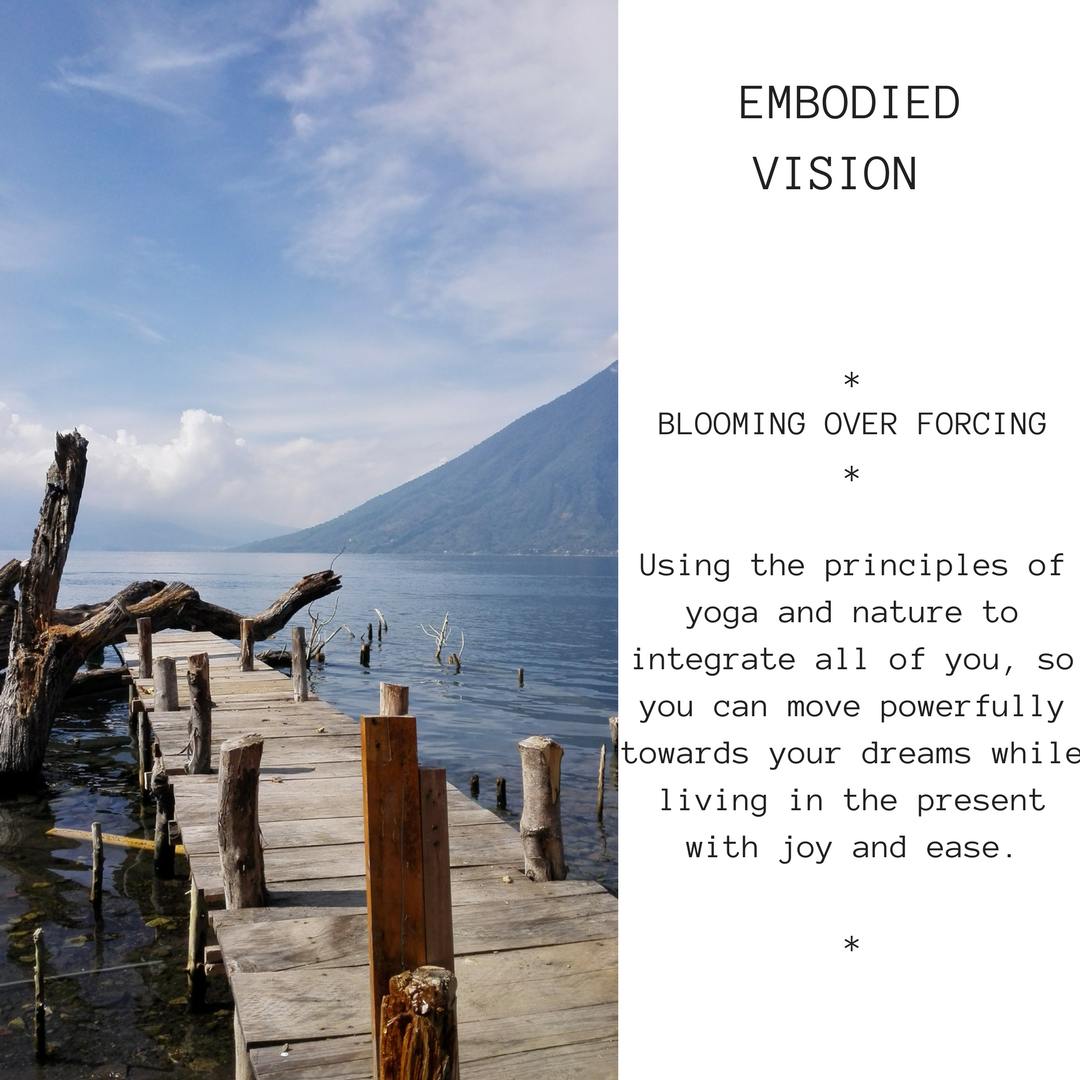 embodied-vision-2.png