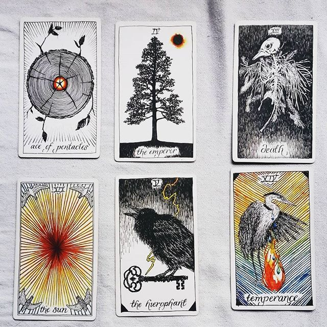 Reading life like poetry. . . .  #tarot