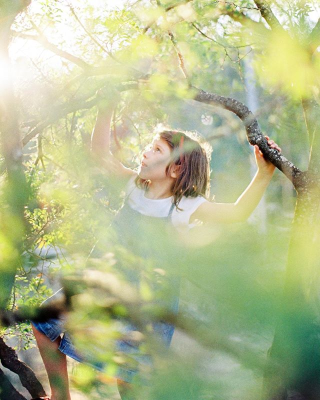 Aquela luz de final de tarde!! · · Foto por: @mcphotography.pt · · · #cachapafilmlab #canon1v #kodakimagepro100 #35mm #filmisnotdead #believeinfilm #filmshooters #filmfeed #filmstagram #kodak #kodak_photo #kodakprofessional #fotografiaanalogica #filme #pelicula #laboratoriodefilme #filmlab