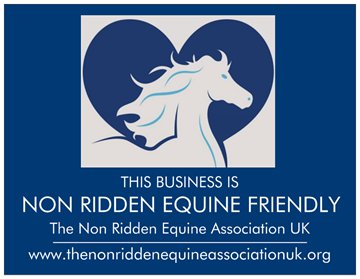 We have recently been granted Non Ridden Equine Friendly Status through the N.R.E.A. Promoting non ridden equines as just as important as their ridden friends.