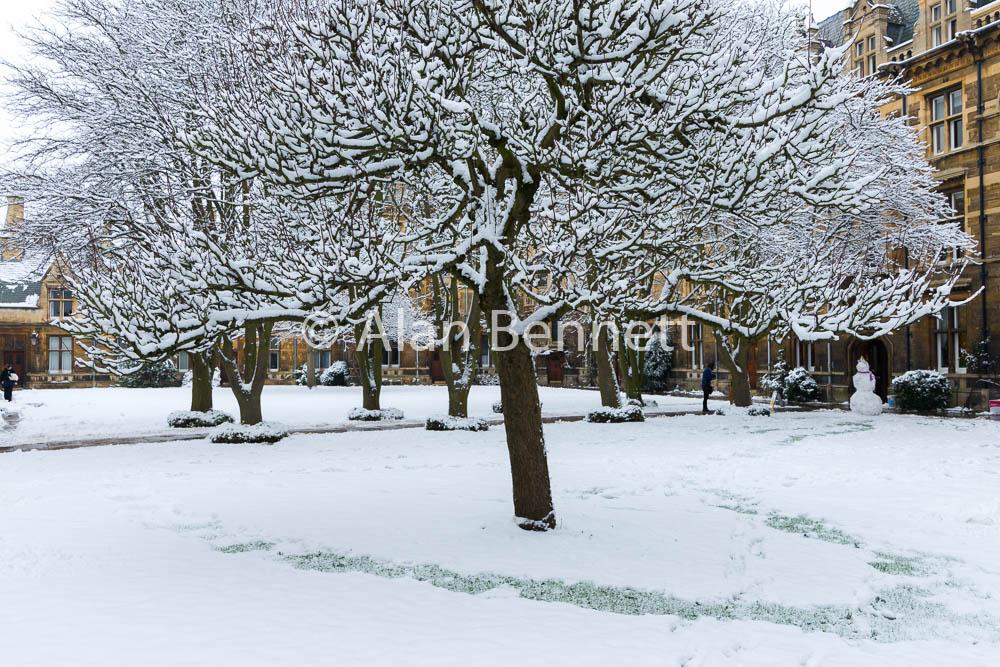 Cambridge-stock-images-167.jpg