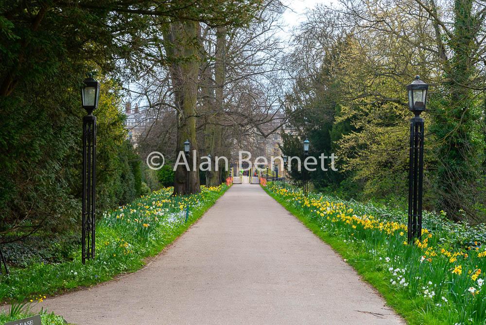 Cambridge-stock-images-214.jpg