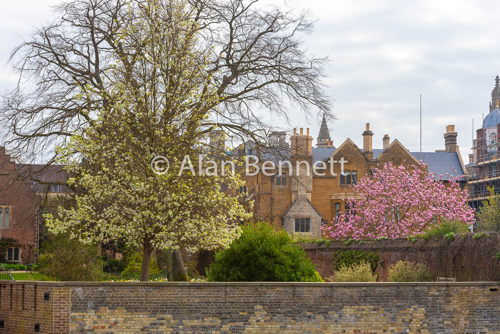 Cambridge-stock-images-216.jpg