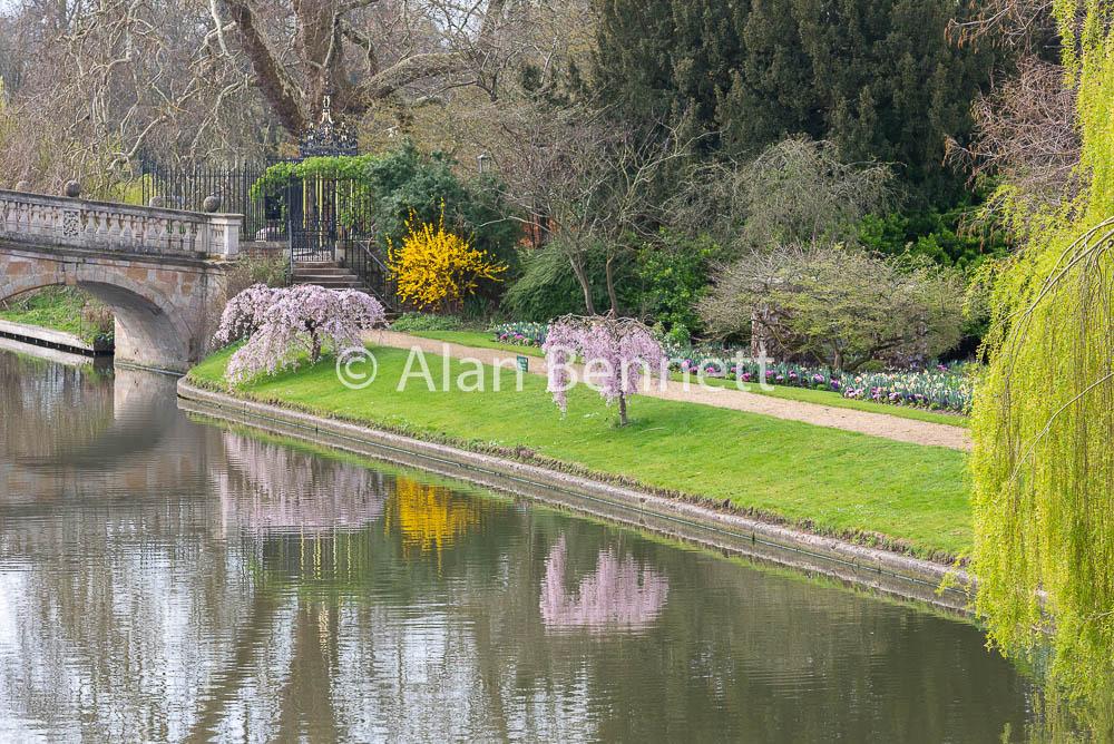 Cambridge-stock-images-217.jpg