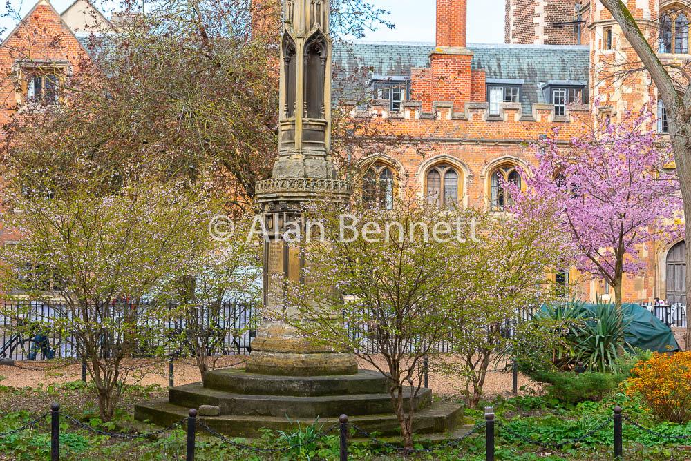 Cambridge-stock-images-219.jpg