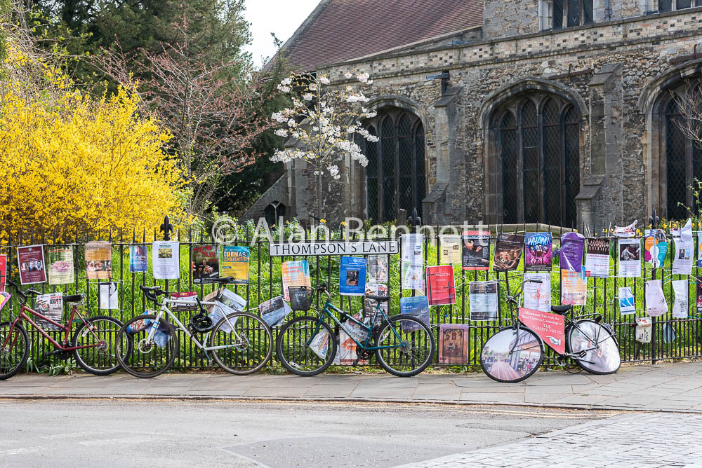 Cambridge-stock-images-221.jpg