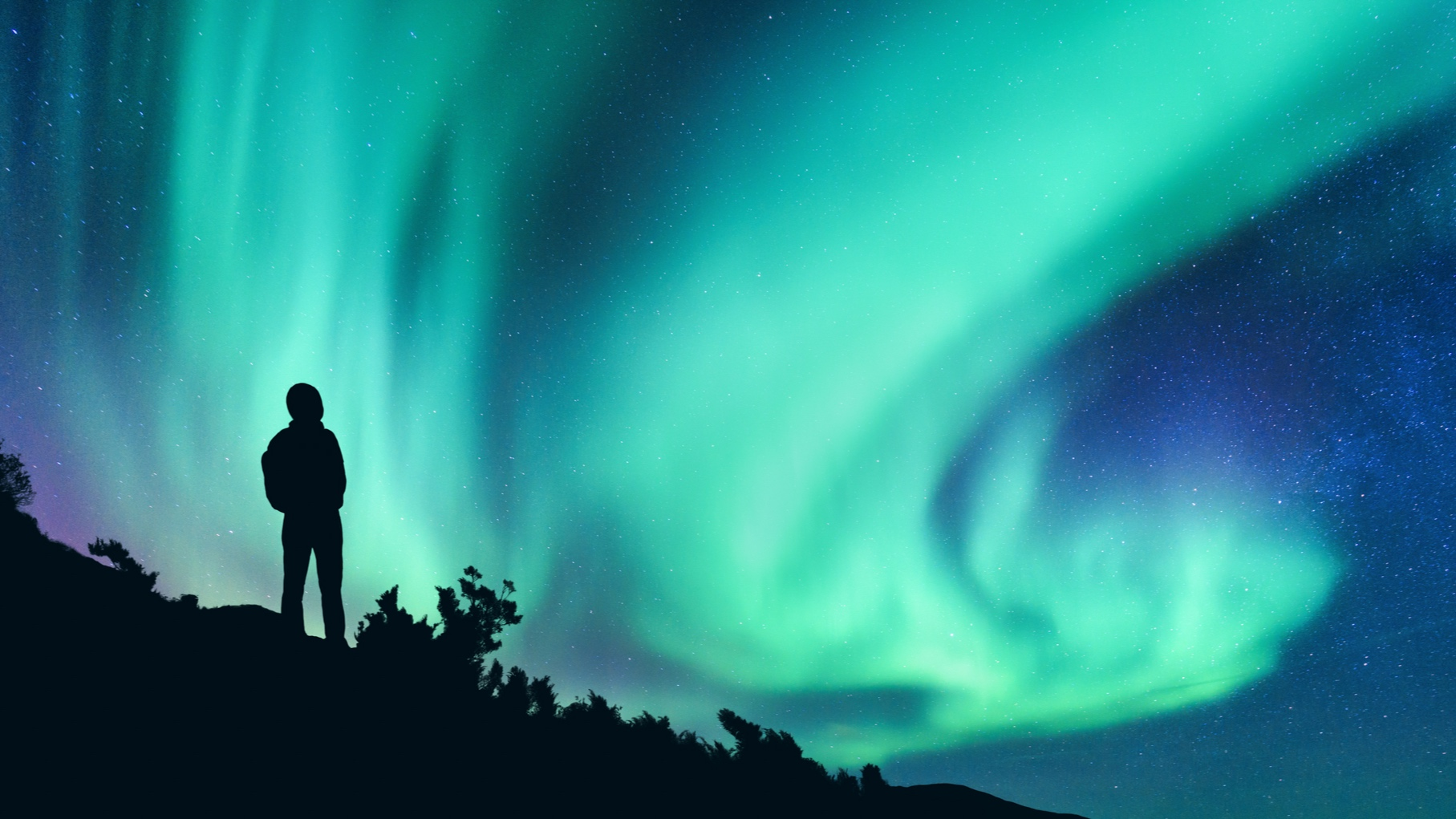 We have two different Northern lights tours. Please learn more and find the one which will suit you the best.  LEARN MORE