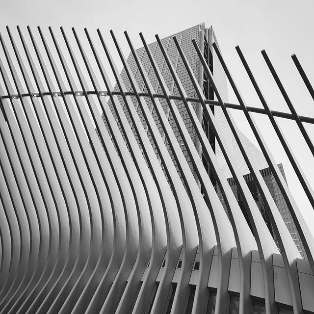 OCULUS Calatrava  #respeto11Septiembre