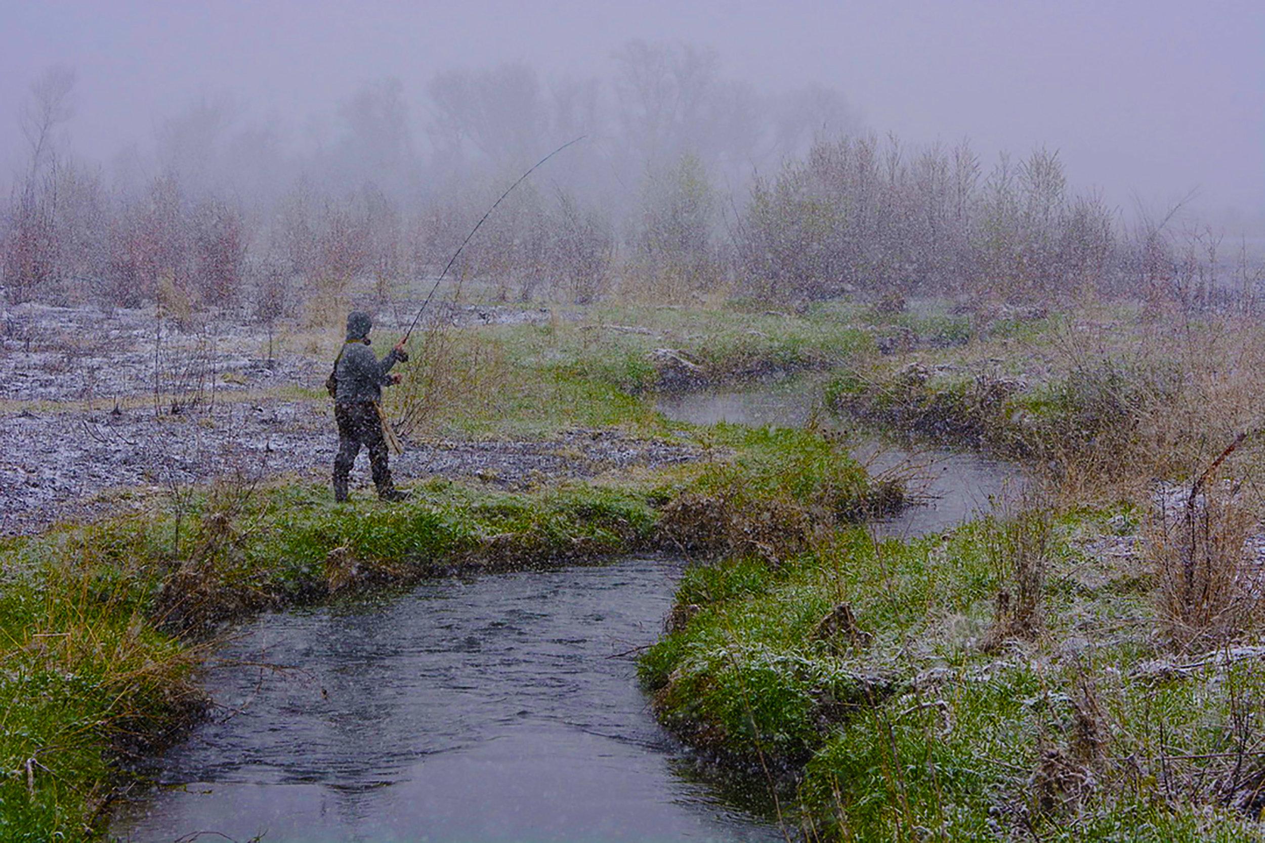 On Vermont Creek April 27