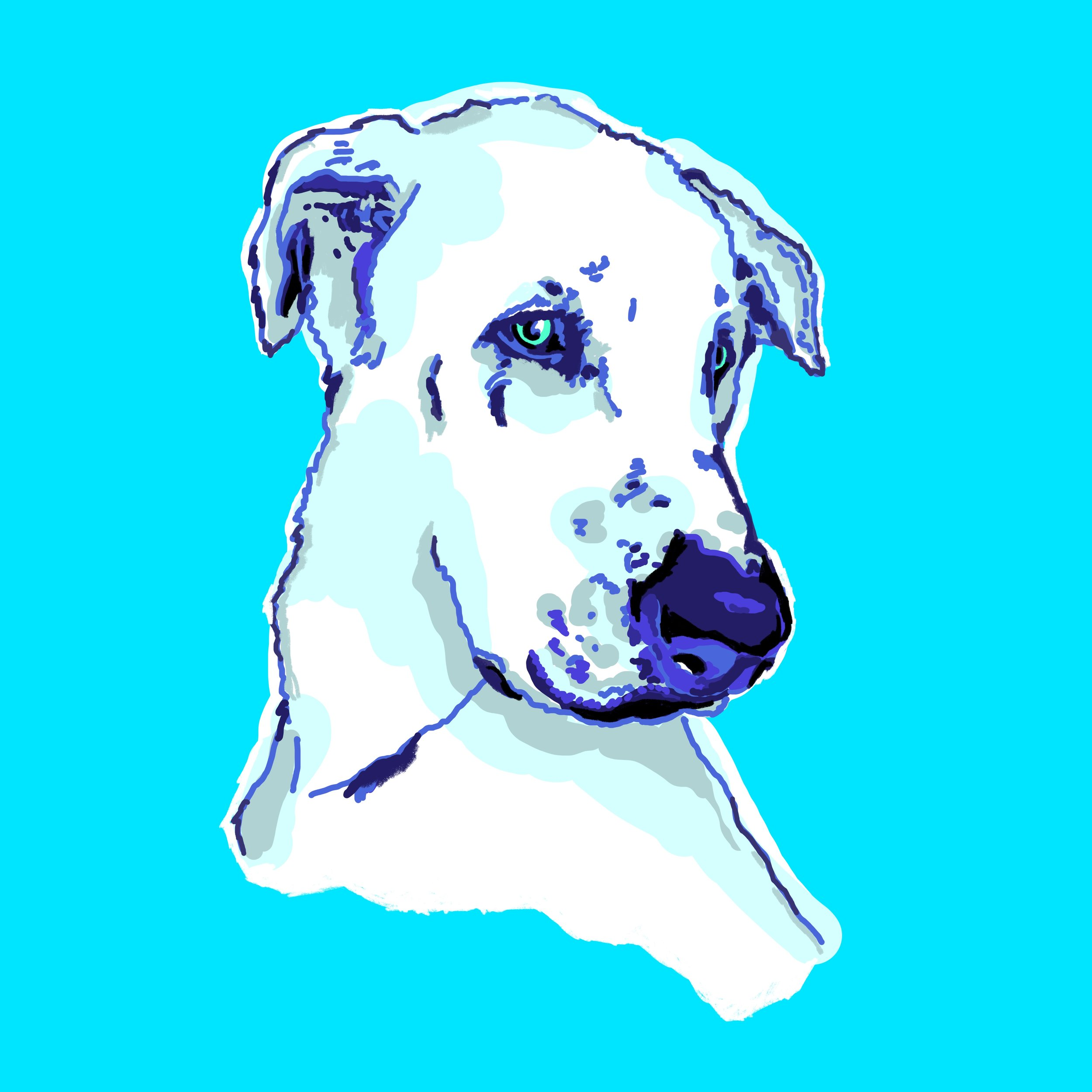 Ilustración_sin_título 2.jpg