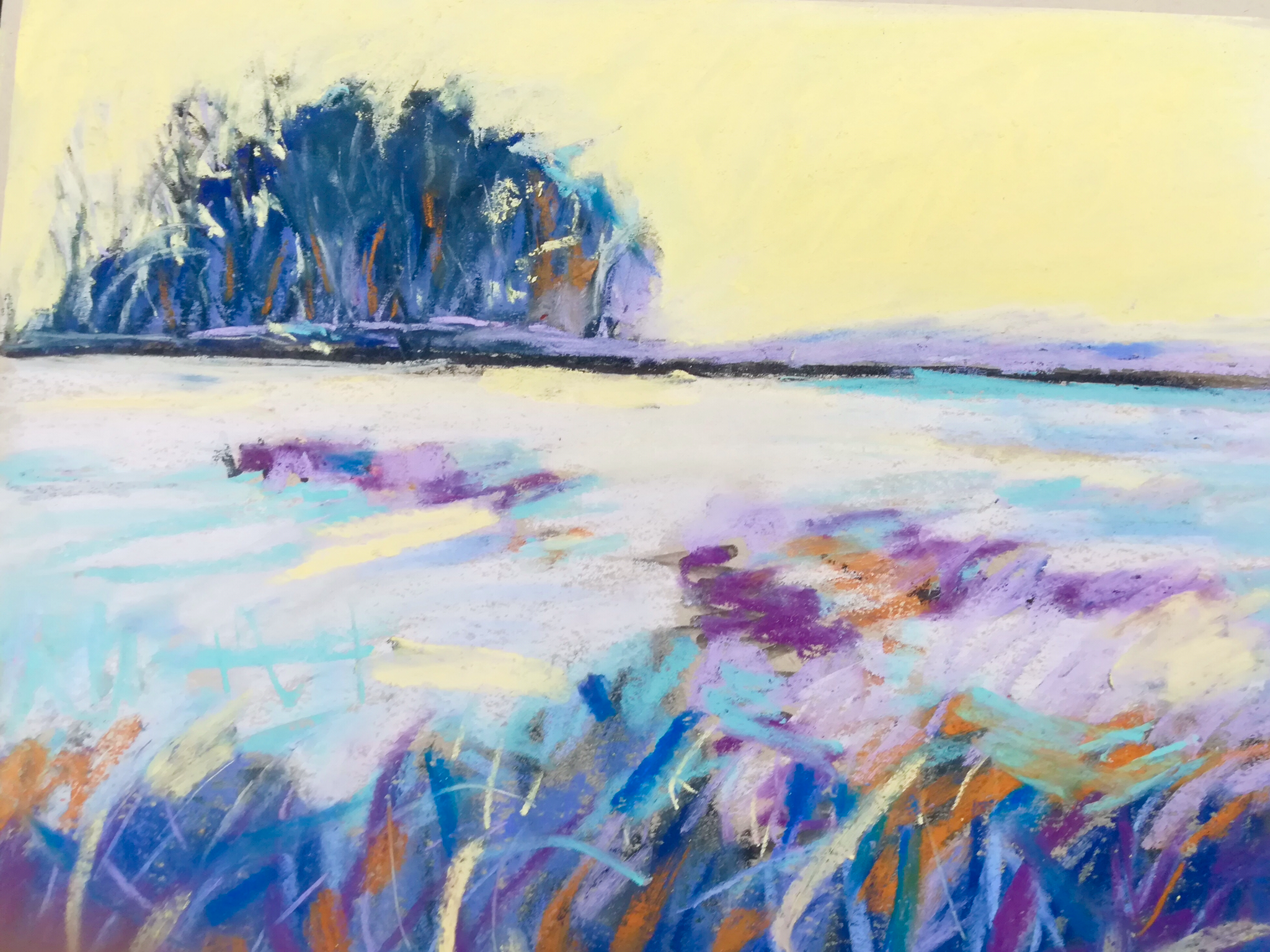 Frosty Field - NEWMedium/Materials used: Soft Pastels on Canson Mi-Teintes paper.Measurements (framed): 36cm x 48cmMeasurements (Unframed): 30cm x 42cm