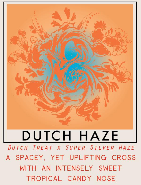 dutchhaze-01.png