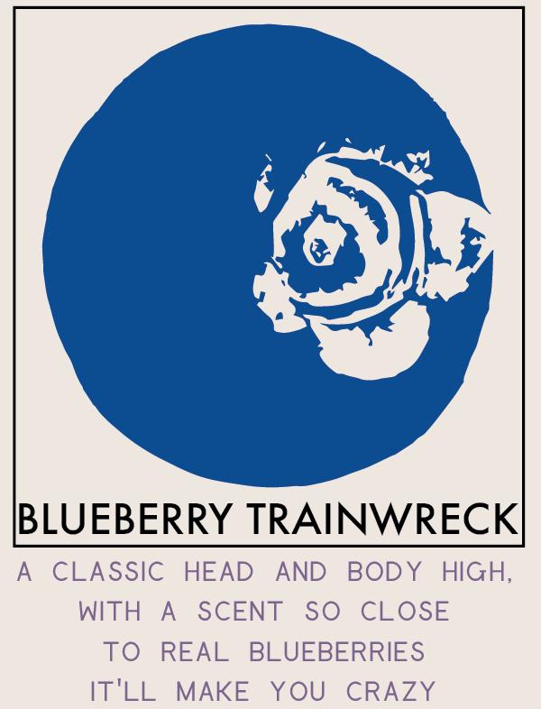 blueberrytrainwreck-01.png