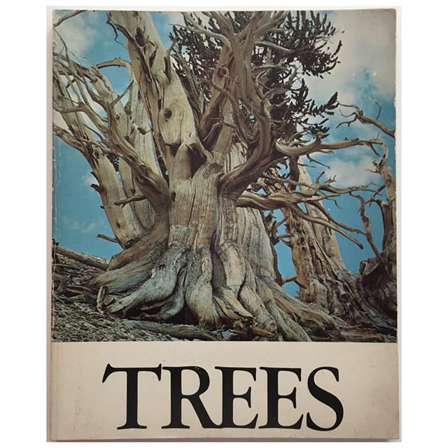Weed is no doubt the ideal demographic for a good coffee table book. SHOW ME THE TREES Trees, 1968. #andreasfeininger #cinx  #blueberrytrainwreck