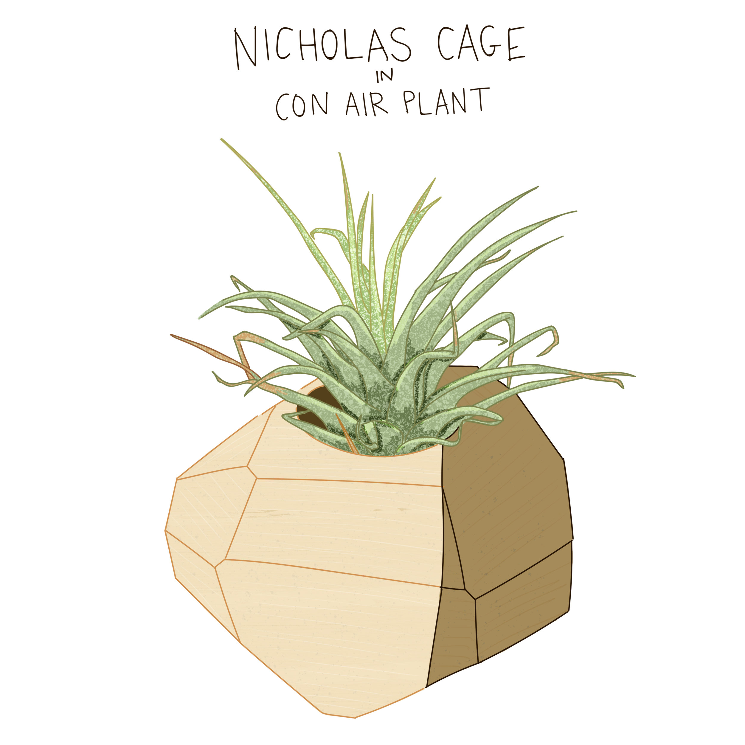 Nicholas Cage.jpg