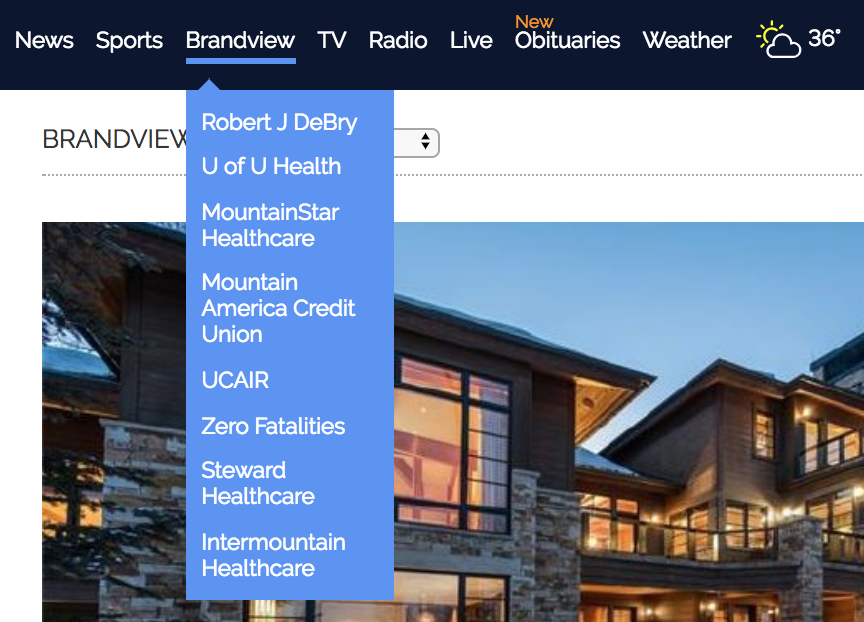 A view of the Brandview tab where advertisers have paid for a dedicated landing page.
