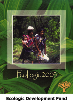dg-web-ar-ecologic-dg2.jpg