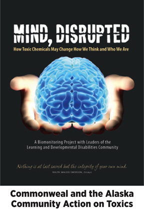 dg-web-rpt-Mind Disrupted-dg2.jpg