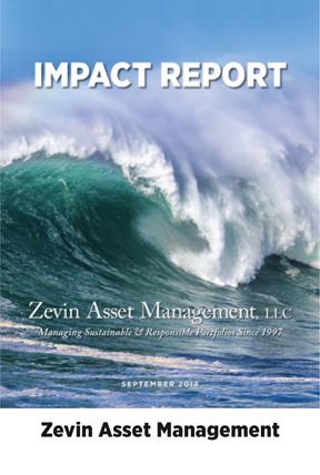 dg-web-rpt-zevin-impact-dg2.jpg