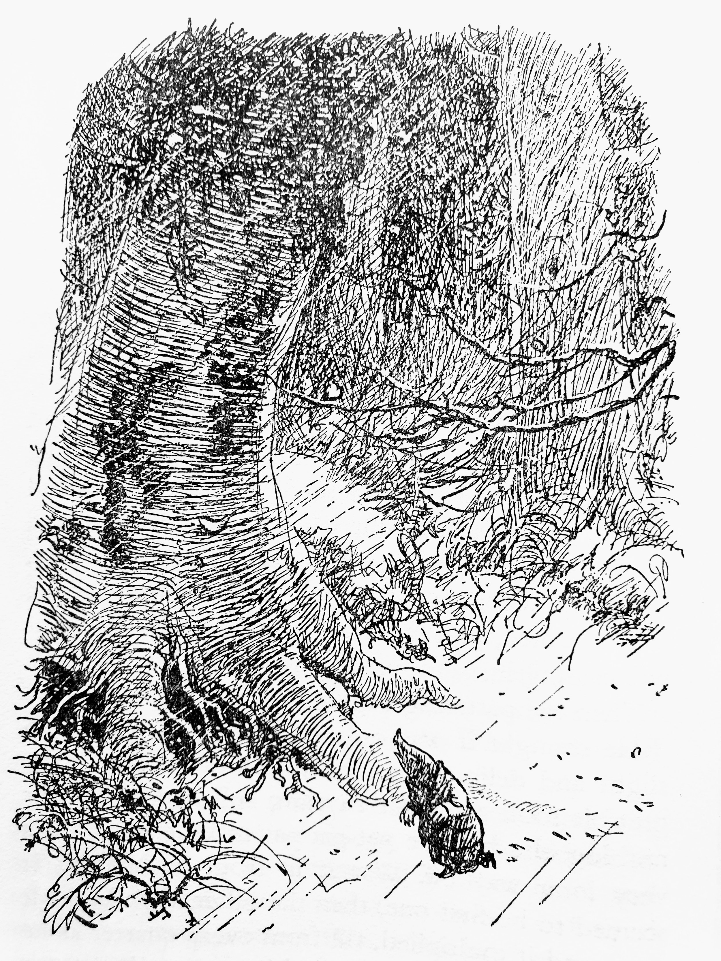 from  The Wind in the Willows  © by E.H. Sheperd 1908