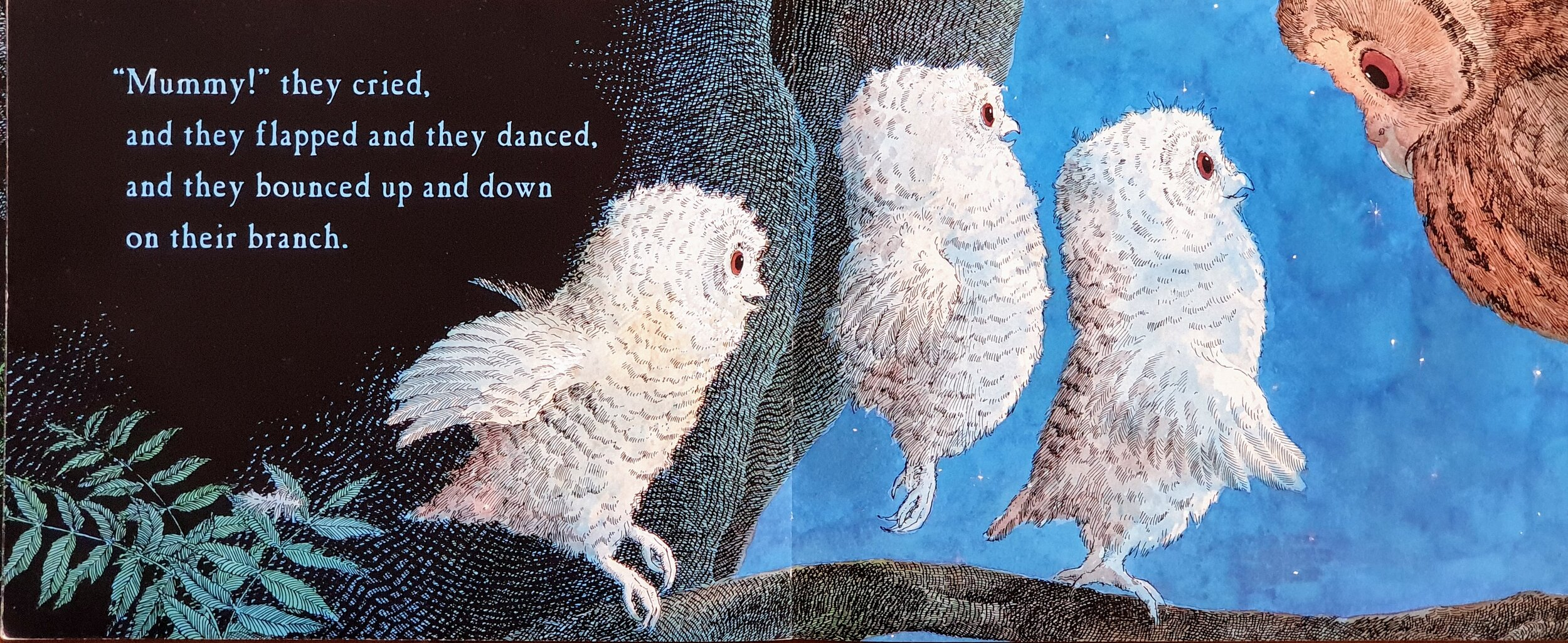 Owl Babies  © by Martin Waddell and Patrick Benson (Walker Books 1992)