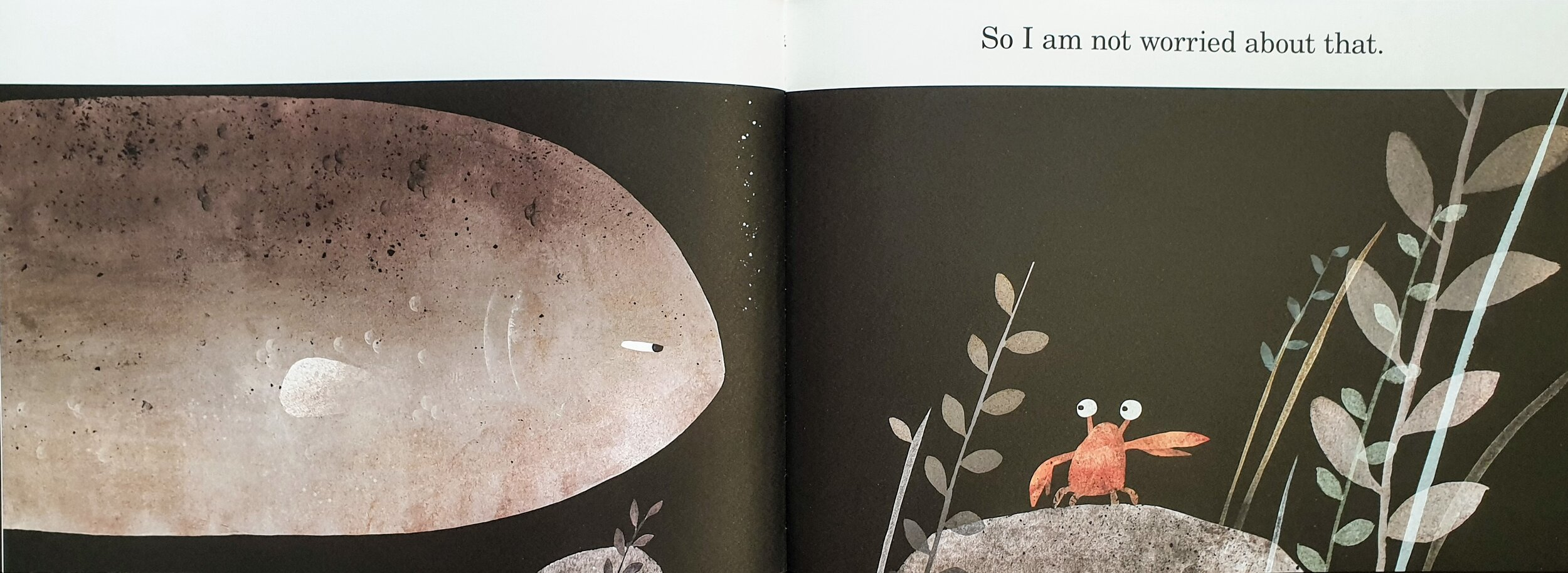 This Is Not My Hat  (Candlewick Press 2012) © 2012 by Jon Klassen