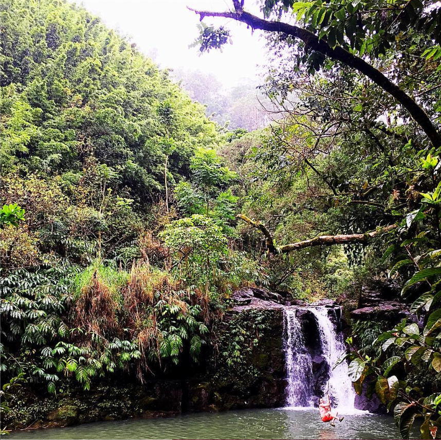 One of many lagoons you can find in the middle of the jungle on the Road to Hana