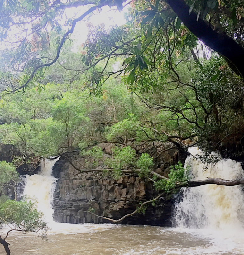 A beauty of a waterfall featured on one of many pit stops on the Road to Hana