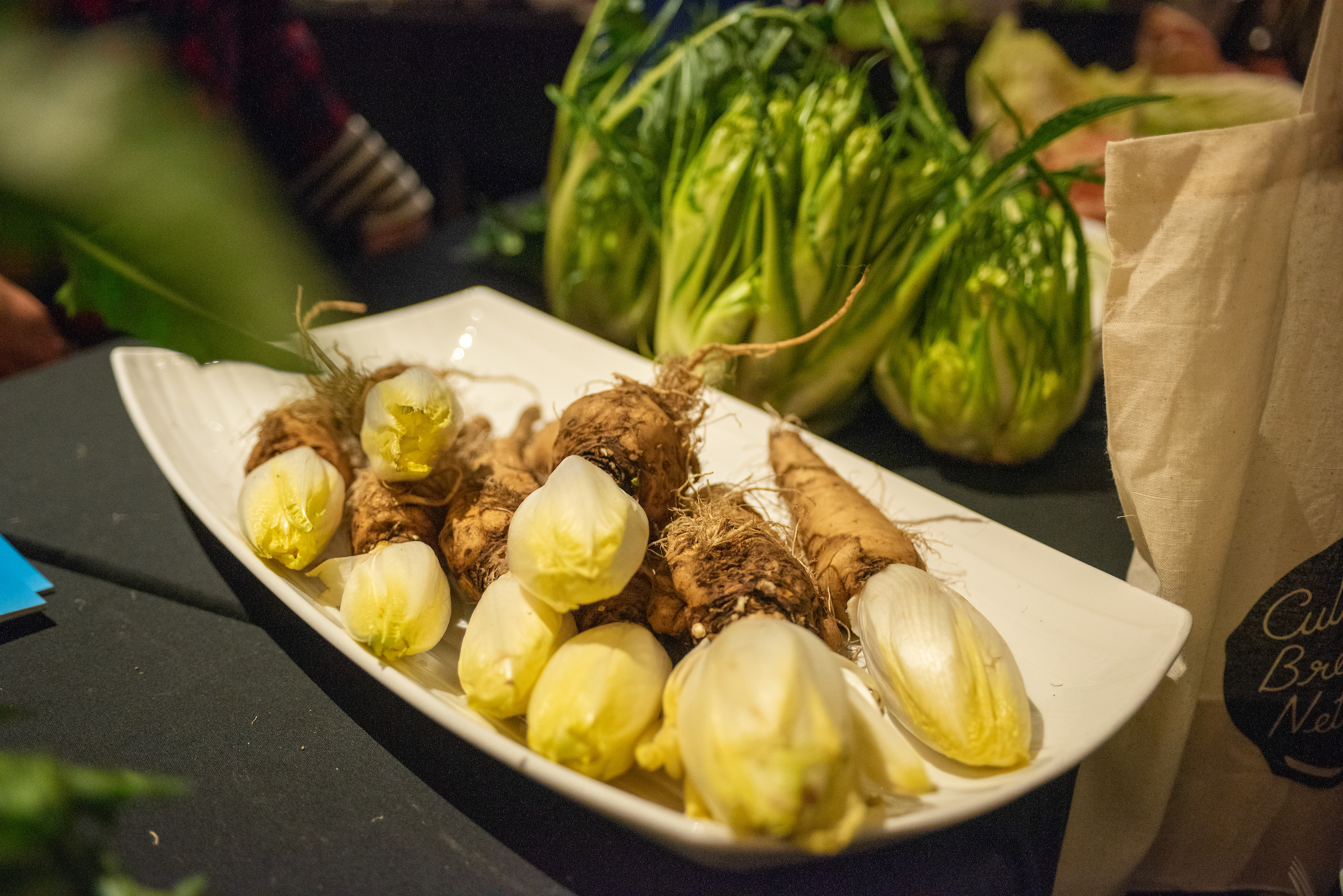 A rare glimpse of Belgian endive from Uprising Seeds. Photo by Shawn Linehan.