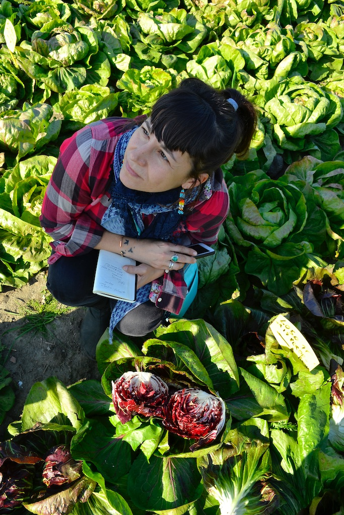 Lane Selman, @culinarybreedingnetwork, taking notes on radicchio in the fields.