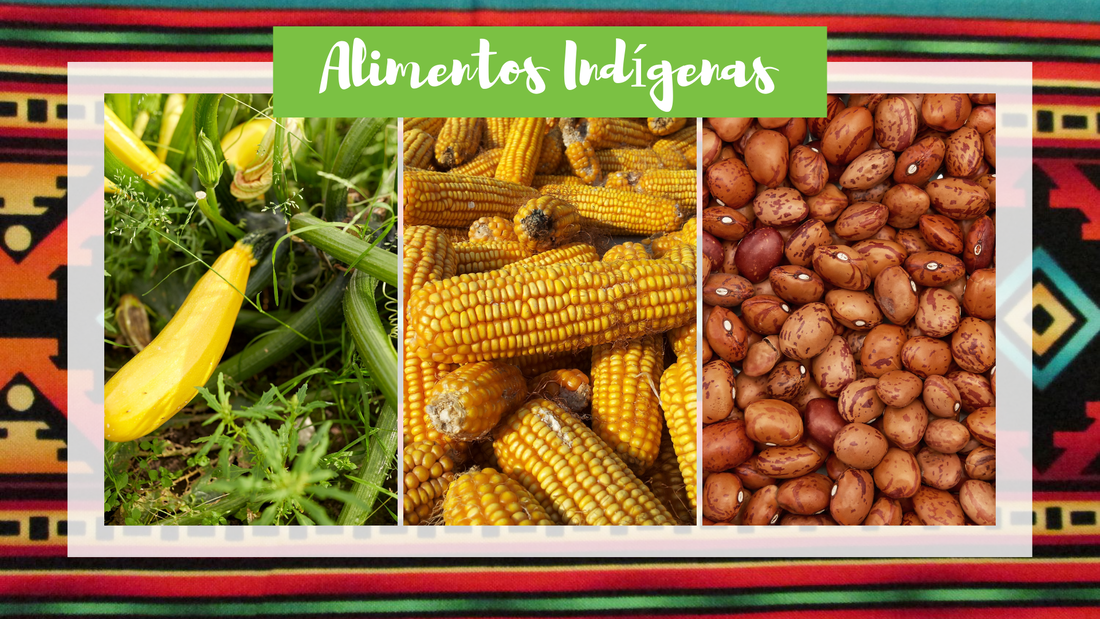 indigenous-foods-graphic-1_orig.png