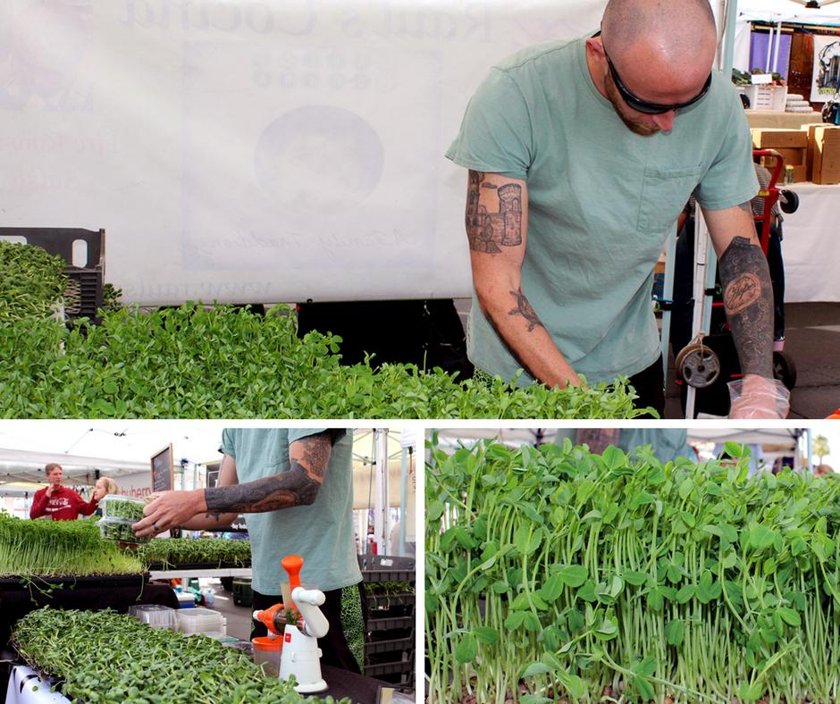 Adam Dombrowsky // Uptown Farmers Market