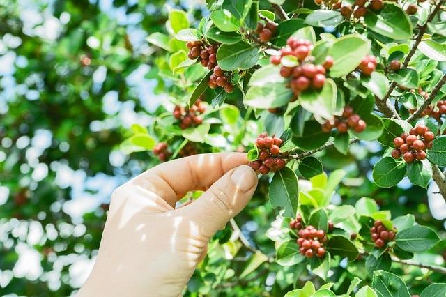 coffee-1839805-640_orig.jpg