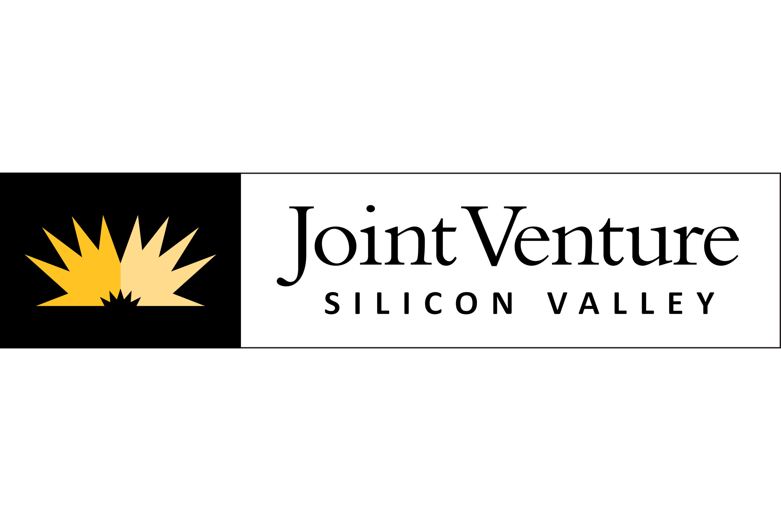 Joint Venture Silicon Valley
