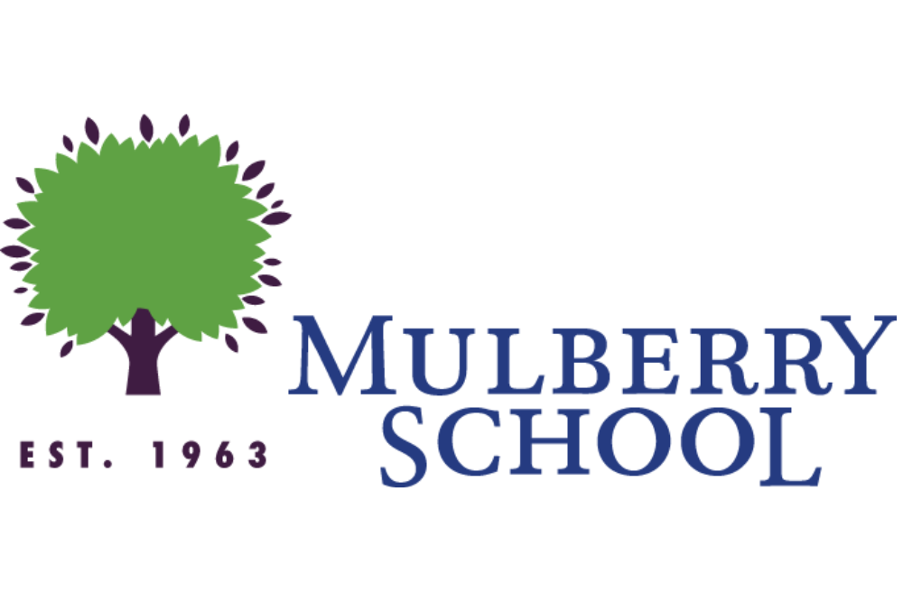 Mulberry School 3_2.png