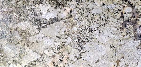 Granite Countertop: Bianco Delicatus