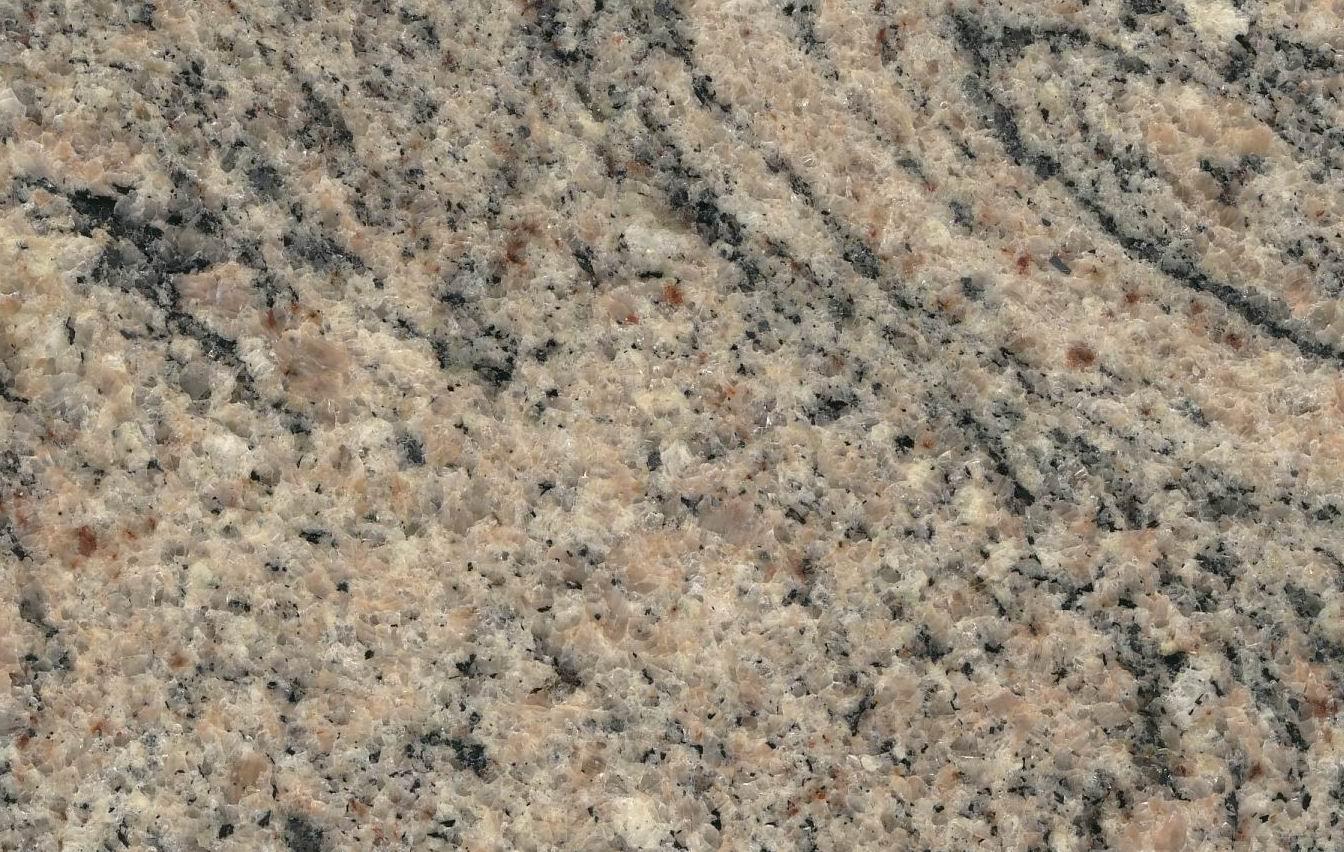 Granite Countertop: Juparana Columbo