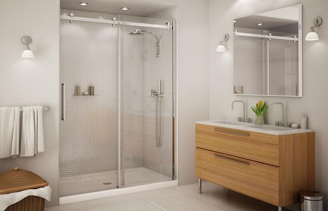 Frameless shower door: BP560C1