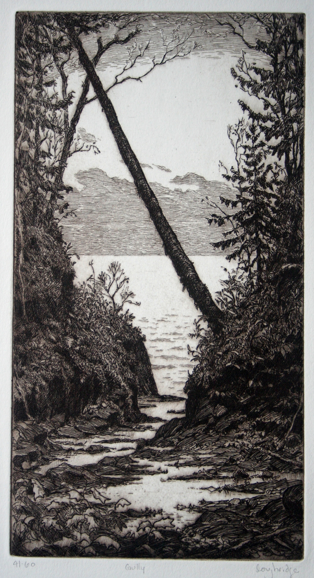Gully to Lake Superior 5x9""