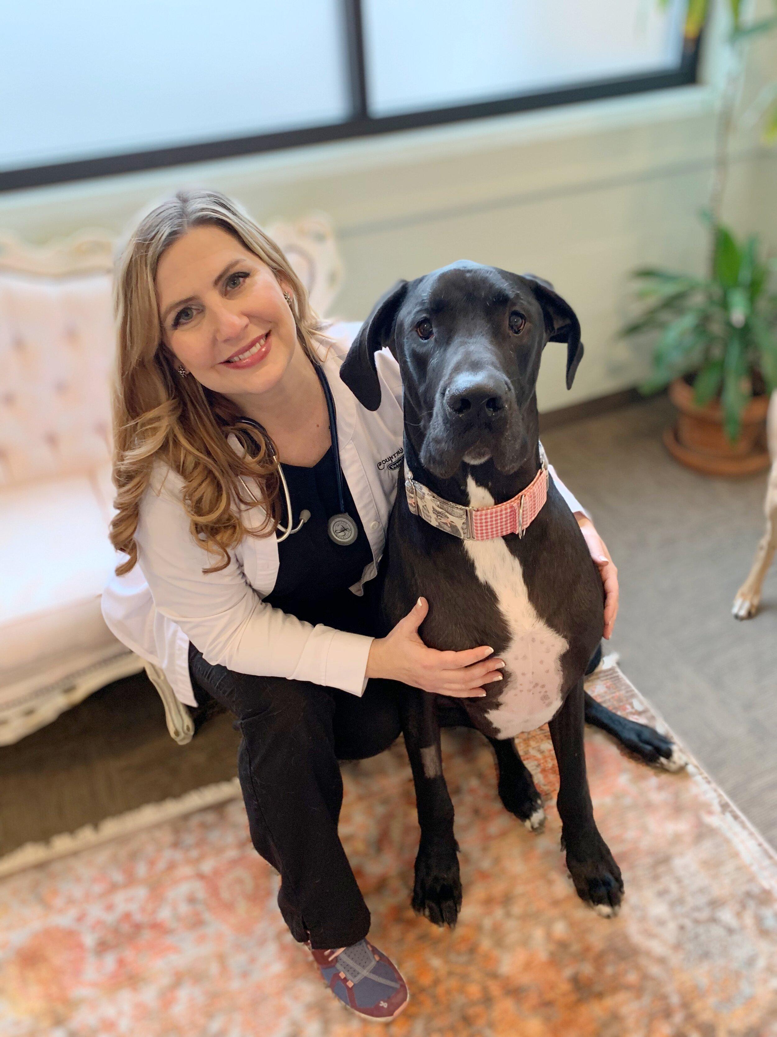Dr. Brie Dagenais, D.V.M.  | Owner, Veterinarian