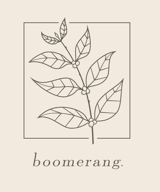 Boomerang1.png